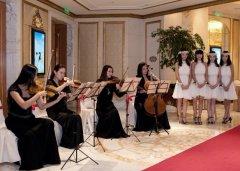 迎�e小提琴