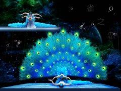 雀之恋--春晚舞蹈